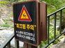 [강원도 삼척여행] 산울림산악회 제81차 산행은 한국에서 가장긴 대표적 오지계곡 홍차처럼 커피처럼 물색이 특이한 삼척 덕풍계곡 용소골 트레킹.