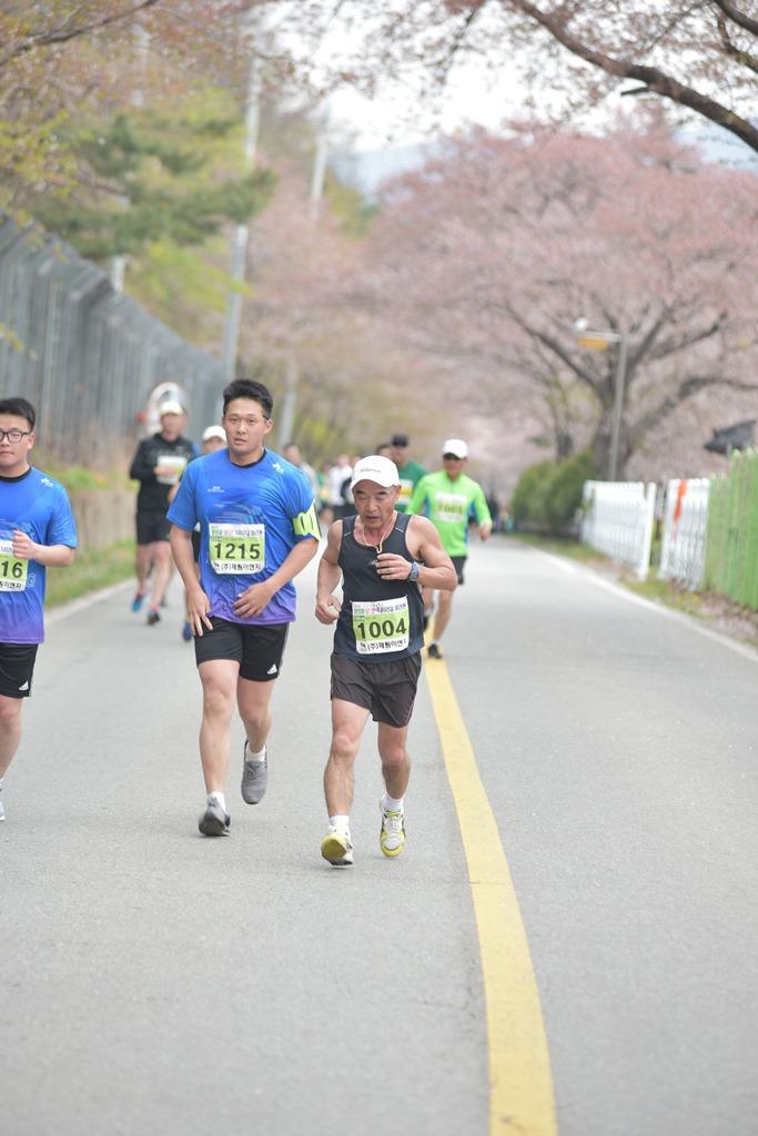 2019 영천댐 벚꽃마라톤대회 주로(11:05 ~ 11:10)